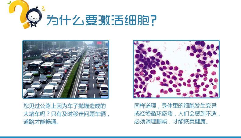 http://image.zhenyoufu.com.cn/shop/article/05947455521137911.jpg