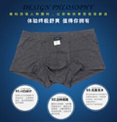 量子能量 原生竹抗菌 男士内裤 两条装 颜色随机 2xl 适用腰围2尺 67